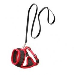 Set harnais chat noir et rouge 10 mm