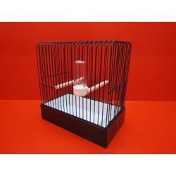 Cage d'exposition oiseau 31 X 17.5 cm