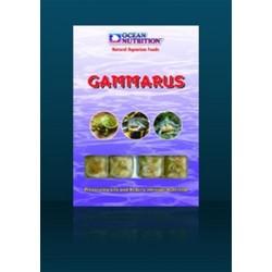 Gammarus congelées blister 100g