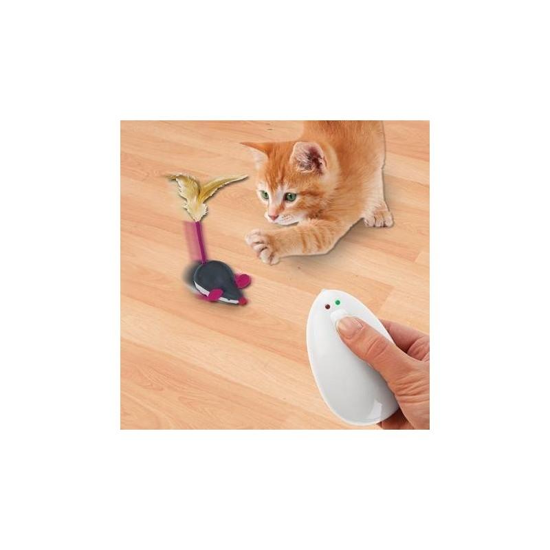jouet chat telecommande
