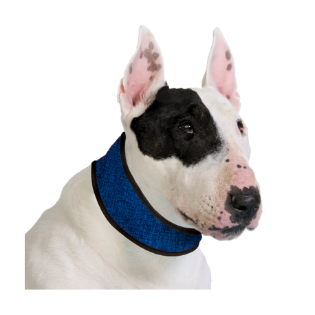 Collier rafraîchissant Cooling collar
