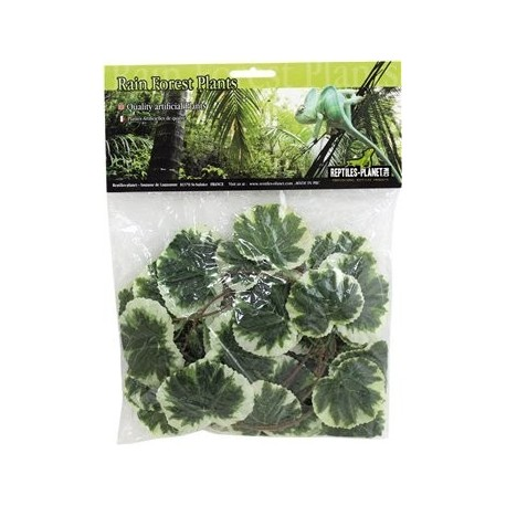 Plante artificielle terrarium liane reptile planet for Plante jungle