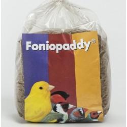 Graine Foniopaddy 500g