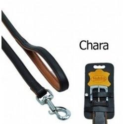 Laisse cuir pour chien Chara 100 X 18mm