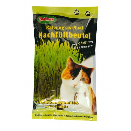 Recharge d'herbe à chat Bubimex 100 g