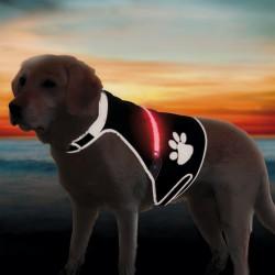 Gilet de sécurité USB Flash pour chien
