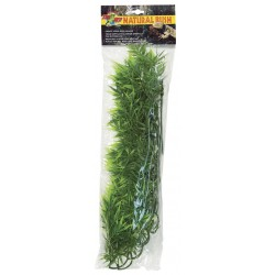 Plante madagascar Bamboo 56 cm Zoomed