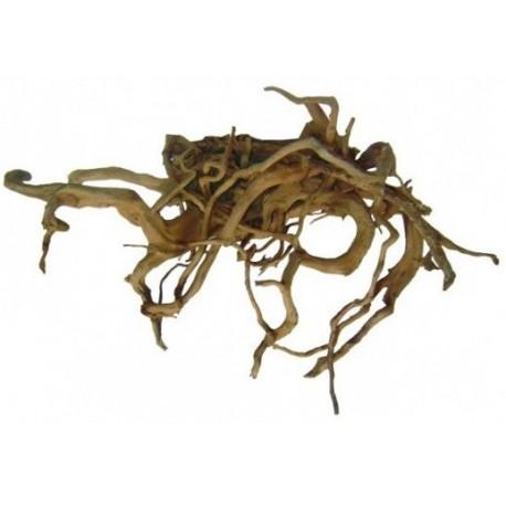 Décor racine vigne rare rouge 40-80cm