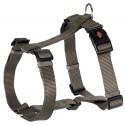 Premium harnais H L-XL 75-100 cm/25 mm