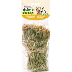 Snack Hay Bale dandelion 70g