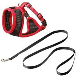 Set harnais chaton noir et rouge 10 mm