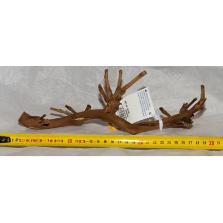 Racine Winewood 15-30 cm