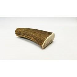 bois de cerf naturel Small