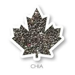 Graine de chia 1Kg Manitoba