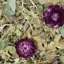 Friandise grainless carvi pissenlit 100g jrfarm