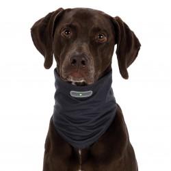 Trixie Insect Shield tour de cou pour chien L