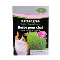 Herbe à chat Bubimex 100 g