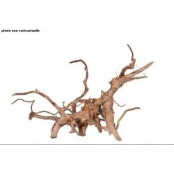 Décor racine vigne rare rouge 40-50cm