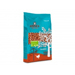 Arachides pelées 2.25 Kg