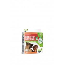 Hygiène intestinale bio moyen/grand chien 10 comprimés