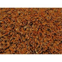 Graines de lin 1 Kg