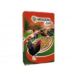 Mélange concassé + granulés poule pondeuse Vadigran 20 Kg