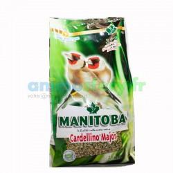Manitoba Cardellino Major chardonneret 2.5 Kg
