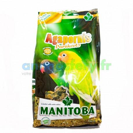 Manitoba Agapornis parakeets 3Kg