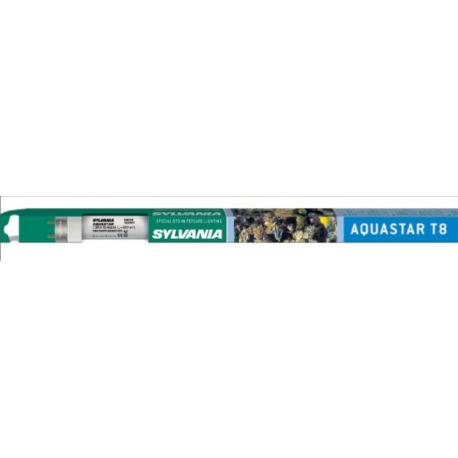Néon Aquastar T8 30w 900mm