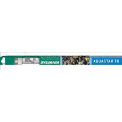 Néon Aquastar T8 36w 120cm