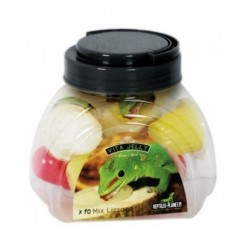 Reptiles Planet Vita jelly Mix insects 10 pièces